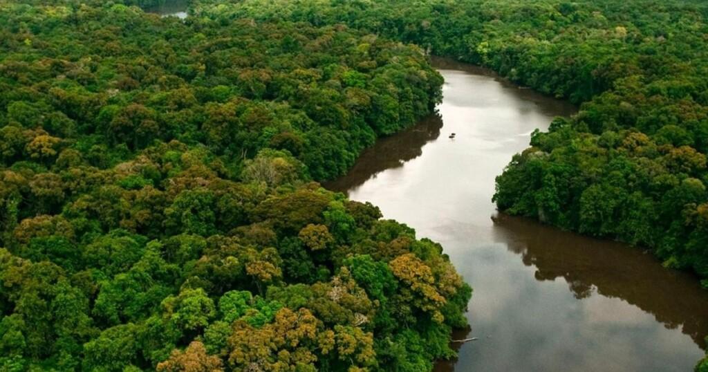 biomas-brasileiros-fb